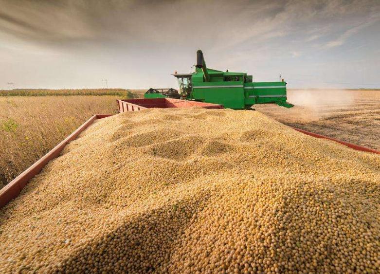 豆粕再次跌破2800元/吨,如何看待?