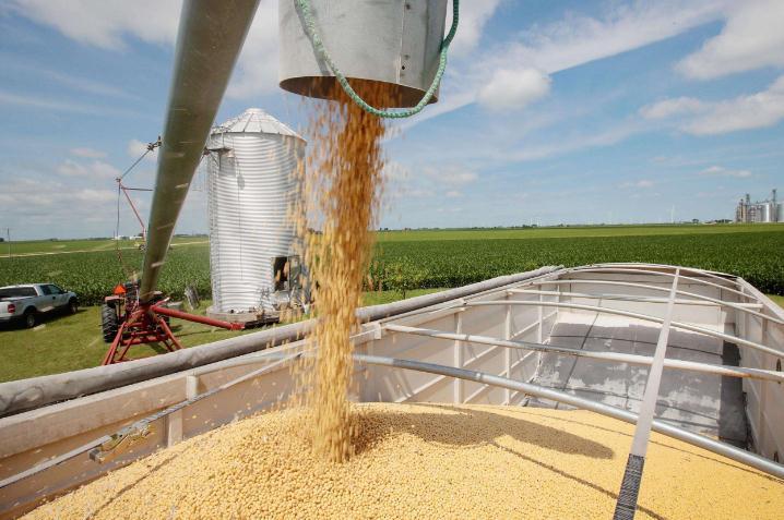 当前国际、国内豆粕基本面及行情测期